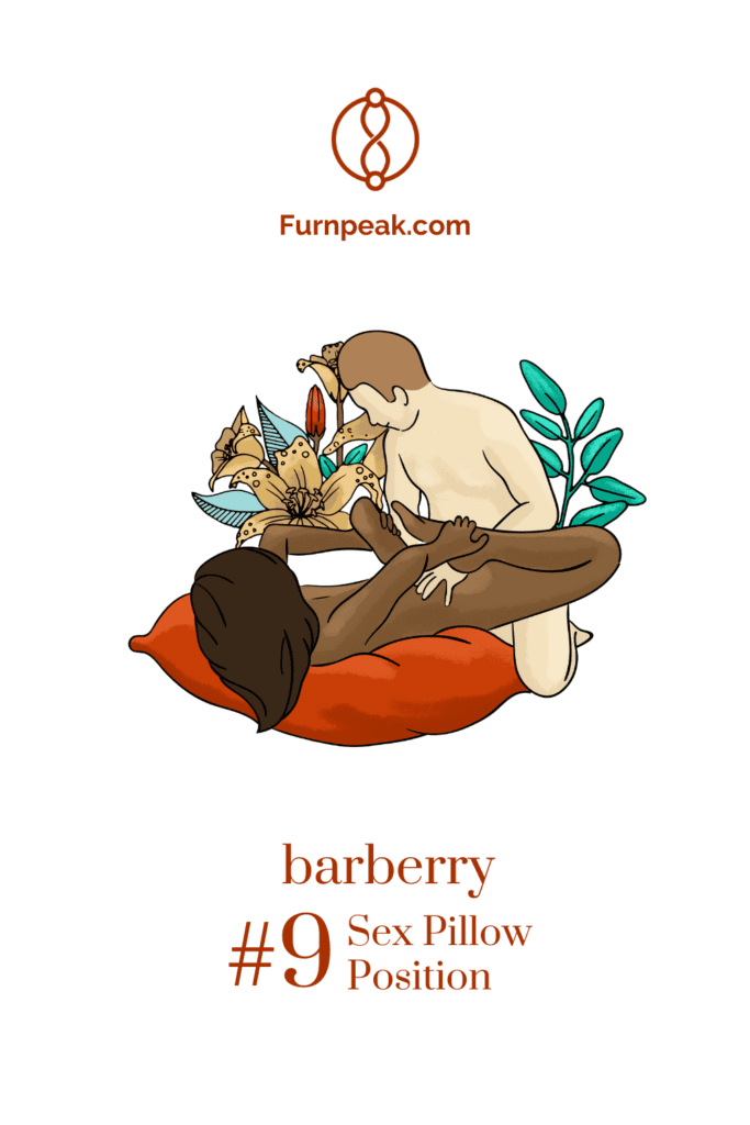 barberry illustration sex positions on sex pillows