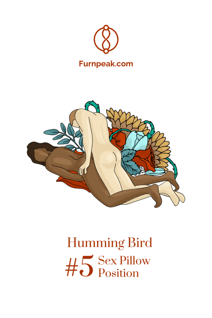 humming bird sexual art illustration sex positions on sex pillows