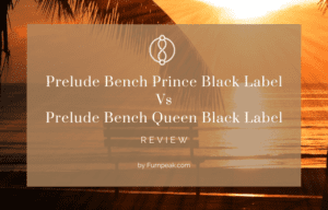 Prelude Bench Prince Black Label Vs Prelude Bench Queen Black Label reviewed and explained