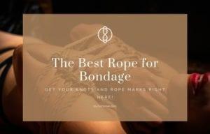 sexy girl with bondage