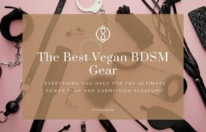 vegan bdsm gear